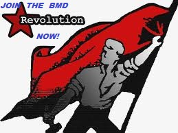 The Evolution of the Revolution